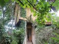 Now you can plan a romantic night in a TREEHOUSE overlooking Cork City