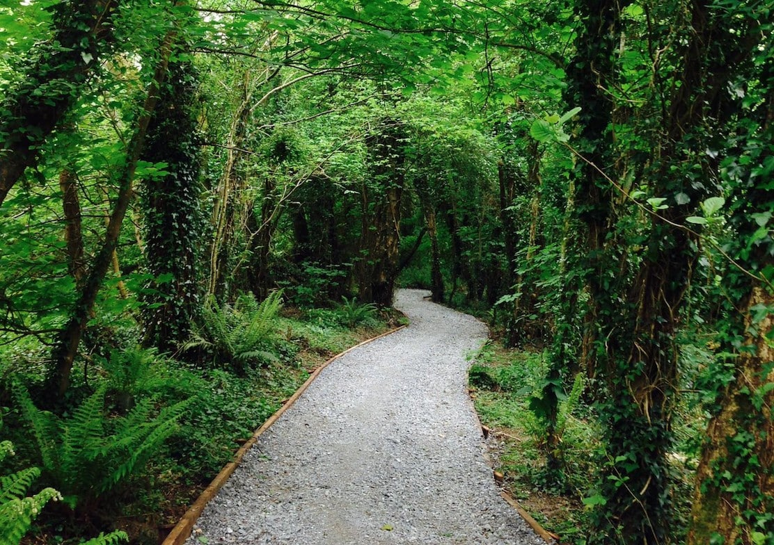 Ballincollig's Regional Park is getting two new bridges and another path  for walkers - Yay Cork