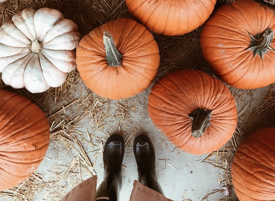 Learn how to \u0027Pimp your Pumpkin\u0027 at this brilliant autumn
